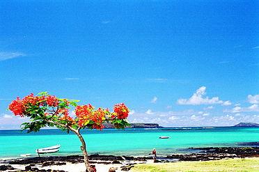 Guide-Vivre à l'ile Maurice – Vacances, investissement, retraite